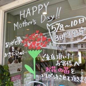 母の日のお花の苗プレゼント最終日ですよ!