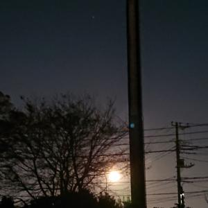 牡牛座満月さんのパワーがすごい!!