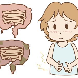 腸内環境を整えて自己免疫力のアップ!