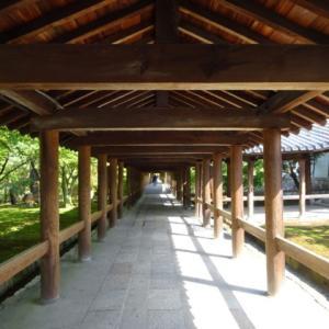 東福寺 苔庭と石庭