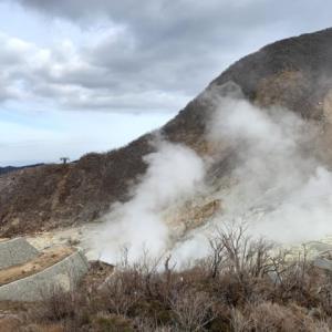 箱根大涌谷の黒たまご