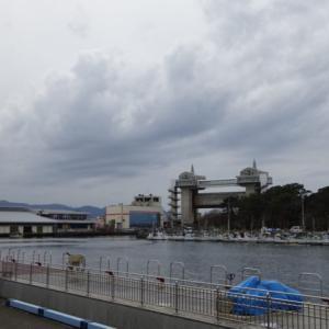 沼津港の休日ランチ