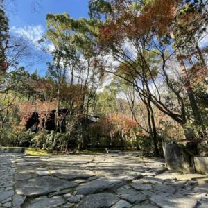 アマン京都 洛北に広がる森の庭