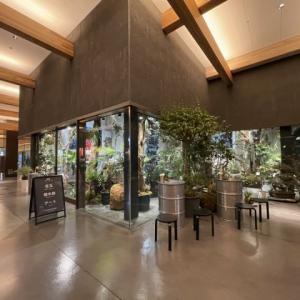 冬の京都の「ディス イズ シゼン」植物店&茶屋
