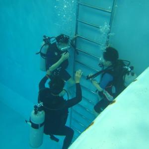 家族で過ごす夏休み 初島 ダイビング