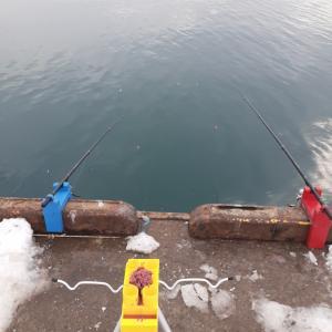 1/12 2020年初釣りは小樽へ!!