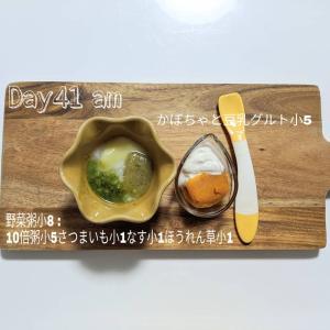 6m4w 離乳食day41-44
