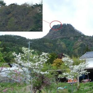 子檀嶺神社(管社社)奥社の土台修復工事を行った