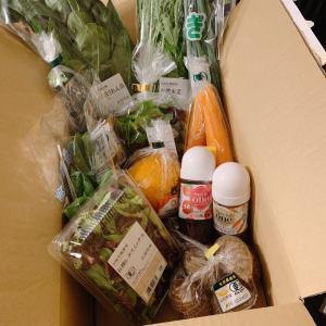 待ってました!寺岡有機農場さんからの新鮮有機お野菜(⌒∇⌒)