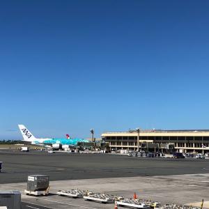来年夏休みハワイの特典航空券争奪戦③