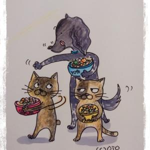 犬・猫にとっての食べる