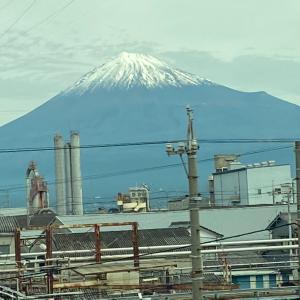 コロナ禍の東京に着地。