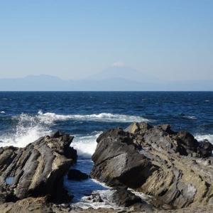 三浦半島で富士山どどーん 海鮮どどーん