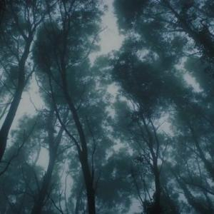 ~Twitterと同じ記事でゴメンナサイ・・・。    御大・H.P. Lovecraft の傑作短編『宇宙からの色』の再々々々(?)映像化作品//原題;『Color Out of Space』<原語版Trailer>~