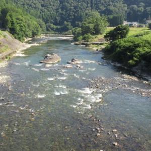 吉野川鈴音橋へ いつだってゴーイング・マイ・ウエイさ