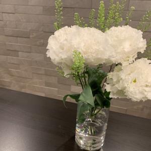 今週の愛でる花たち