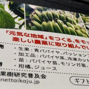 愛媛で熱帯果樹を育てる高野浩幸さん