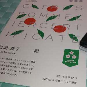 柑橘ソムリエ認定証・ピンバッジ届く 野菜ソムリエ更新通知 密芋工房8月8日オープン