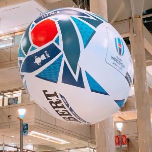 ラグビーワールドカップ(^^)