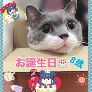 にゃんにゃんにゃん〜お誕生日