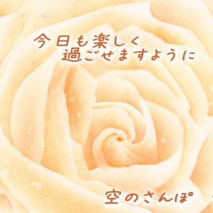 今日のバラ^^