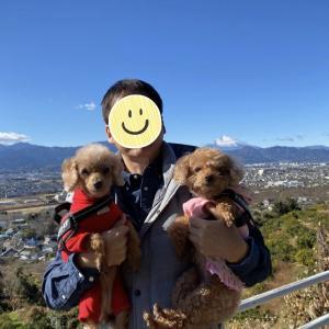老犬の終活記〜2021年の老犬の誓い