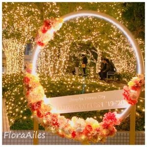 ◆新宿テラスシティイルミネーションのお花も楽しみます♪