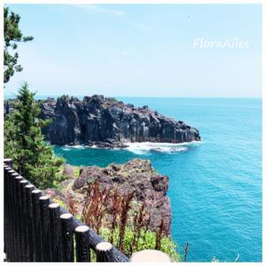 ◆海の日です♪青い海は心が穏やかになりますね(^^)