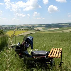 オーストリア5月1日外出規制解除です。