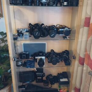 フィルムカメラに恋をした