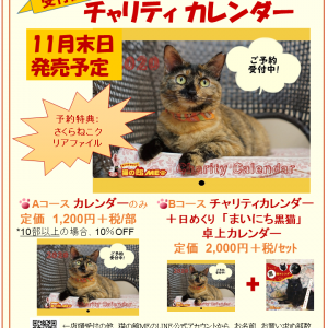 """◆発売日確定◆""""チャリティカレンダー2020"""""""
