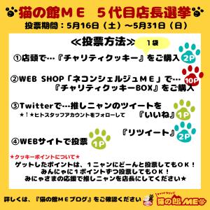 【あと1時間】店長選挙★いよいよ〆切!/ 明日から連休