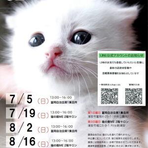 【復活】猫の譲渡会【7/19】