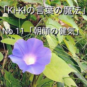 「Ki-Kiの言葉の魔法」No. 1 1.「 朝顔の健気 」