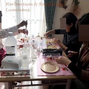 【開催報告】初めてのハーバリウムカフェ。素敵なハーバリウムが並びました