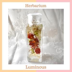 同じお花を使って大小のハーバリウム