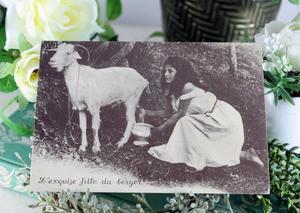 【フランス】L'exquise fille du bergerのポストカード