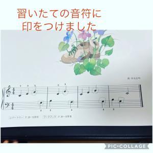 習いたての音符に印をつけました♪