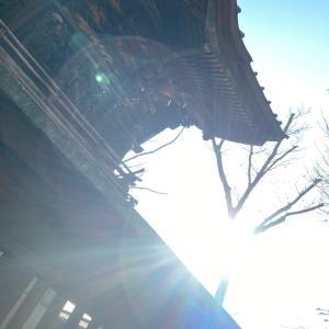 伊勢崎神社へ行って来ました