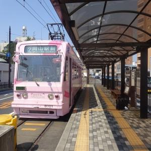 2019年8月の岡山・広島・鳥取・兵庫旅行 8 岡山電気軌道 車両編 その1 7900形 8101