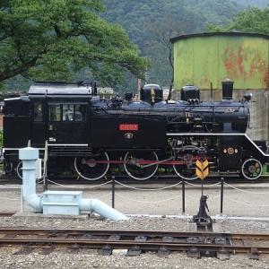 2019年8月の岡山・広島・鳥取・兵庫旅行 12 若桜鉄道の旅  その6 若桜鉄道の保存車両 C12 167号機