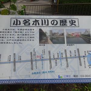 小名木川に沿って歩く その10 再び運河同士の交差点へ