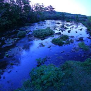 早朝のなんともないグダリ沼