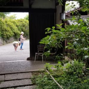 鶴川旧白洲邸の6月
