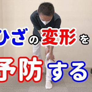 ひざ関節の変形を予防するセルフケア よしの整骨院《大阪府和泉市》【腰痛/頭痛/交通事故治療/整体/整形外科】