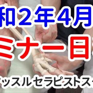 令和2年4月のセミナー日程 【吉野マッスルセラピストスクール 筋膜・トリガーポイント勉強会】