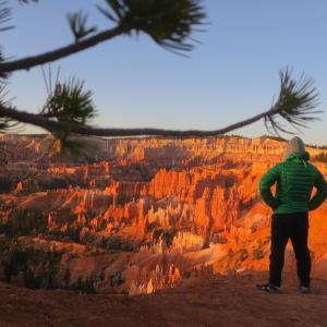 最後の国立公園 ザイオンへ ⑮「おっさんふたりアメリカ旅」