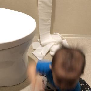 【1歳】トイレ大好き