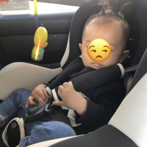 【1y1m】チャイルドシート拒否!の息子