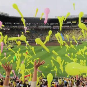 【悲報】野球観戦のデメリットが多すぎるwωwω